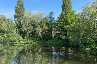 bij vrijwilligerswerk hoort een vergoeding, bosrijke omgeving bij meer