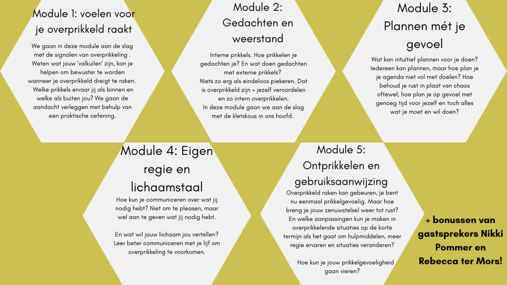 Afbeelding waarop de verschillende modules van de prikkelpub Insta cursus beschreven staan